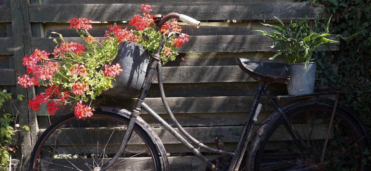 Flot gammel cykel